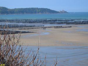 Parcs à huîtres de la Baie de la Fresnaye
