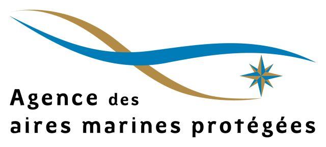 Logo AAMP
