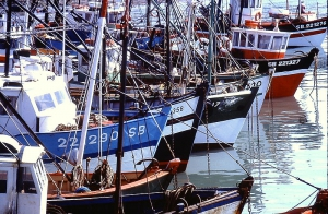 Port_Erquy