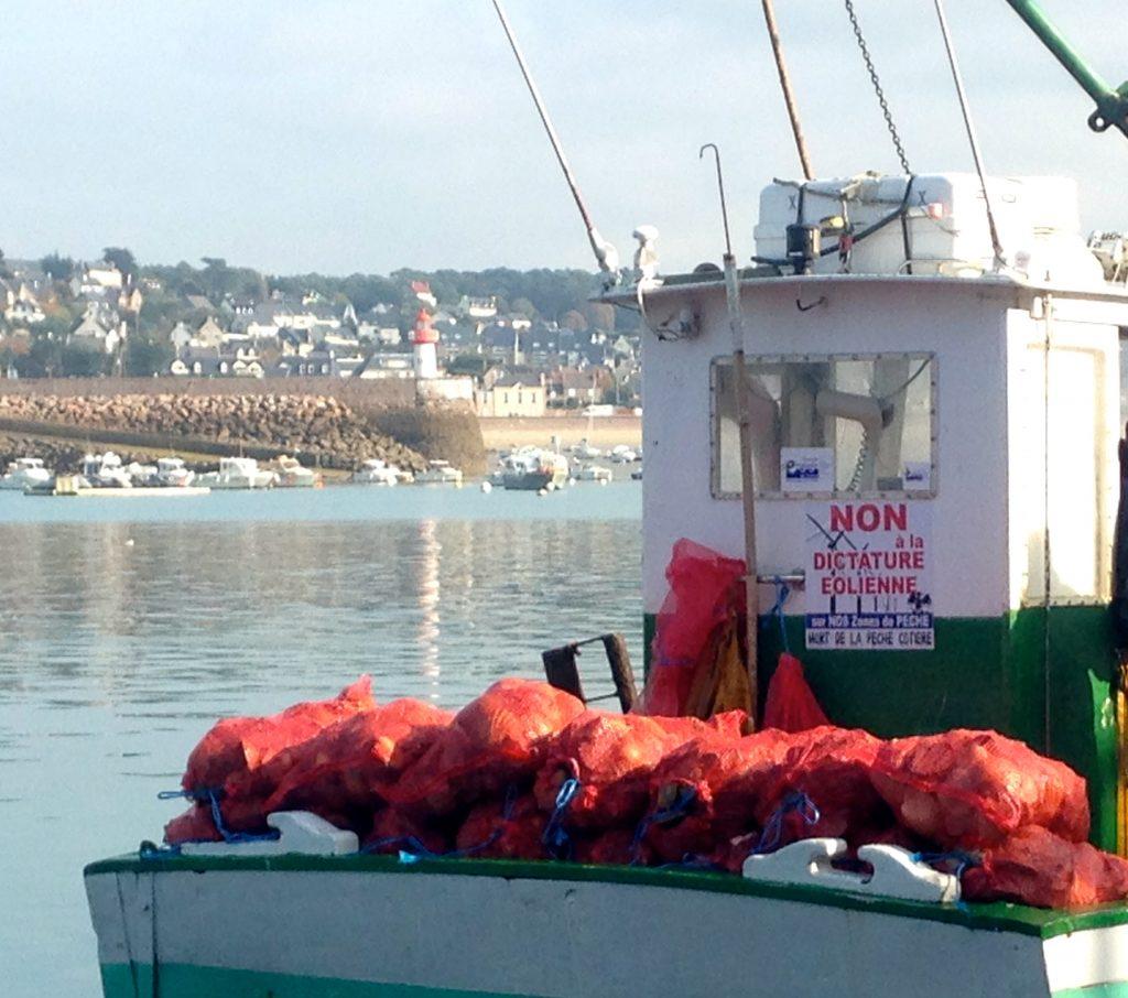 Erquy, retour de pêche à la Saint-Jacques, 2 novembre 2017